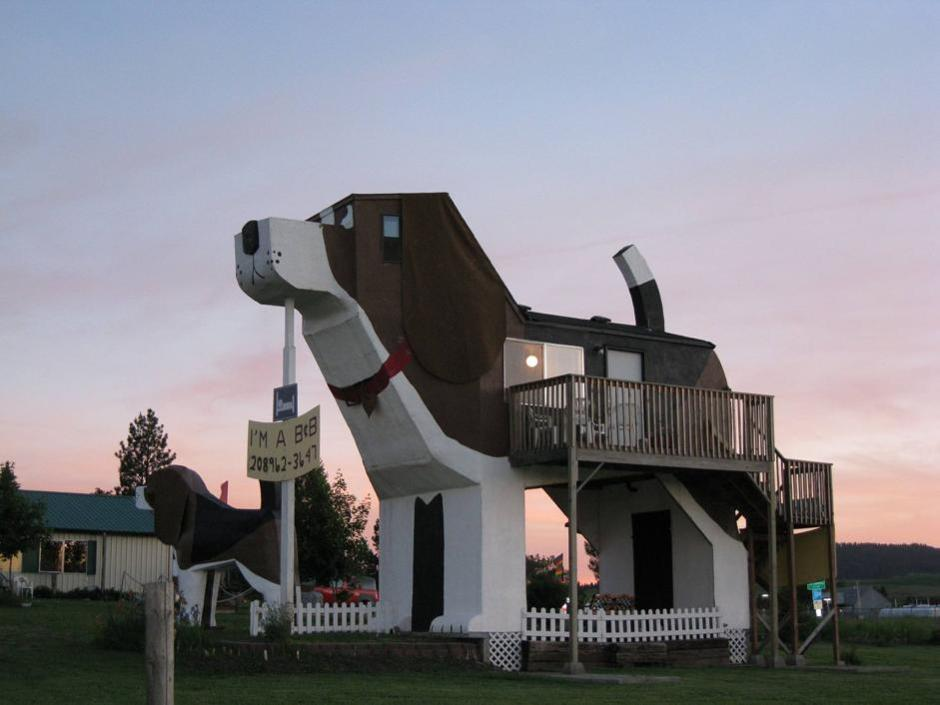 Dog-Bark-Park-Inn-4